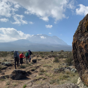 The Lemosho Route to Moir camp on Mount Kilimanjaro