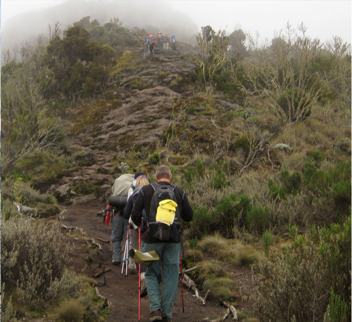 Mount Kilimanjaro Climate Zones Heath